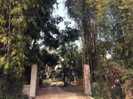 House on 14 rai in Rimkok area.