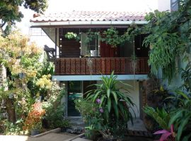House for rent in Chiang rai: 3 Bedroom Lanna style house with Pool, Hongli, Chiangrai