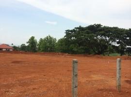 3 rai 2 ngan of land for rent near Rimkok Resort.