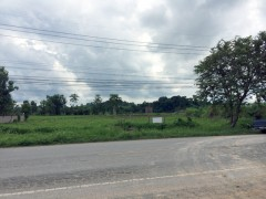 Over 3 rai of raised and ready land near Singha Farm.