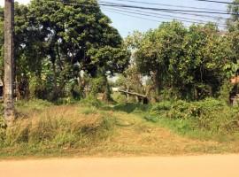 Land for sale in Chiang Rai: 7 Rai near Doi Din Dang Pottery place.
