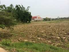 Land for Sale in Chiang Rai: Almost 8 rai just 50 metres from super highway.
