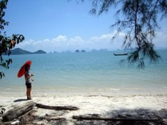 Land for sale in Phang Nga: 5.6 Rai Beach Front
