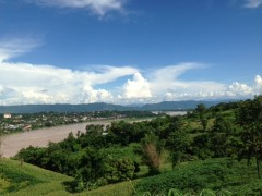 Land for sale in Chiang Rai: 34 Rai in Chiang Khong