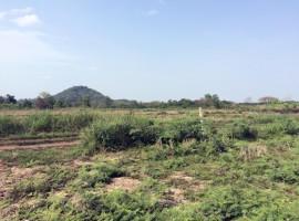 Land for sale in Chiang rai: 3 Ngan 35 Tarangwa(near Central Plaza)