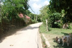 Land for sale in Chiang rai: 2 Ngan 39 Tarangwa near Central Plaza