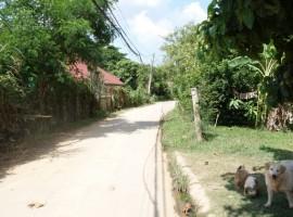 Land for sale in Chiang rai: 2 Ngan 39 Tarangwa near Central Plaza