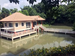 House for sale in Chiang rai: 1 Rai 2 Ngan 24 Tarangwa, Mae Korn