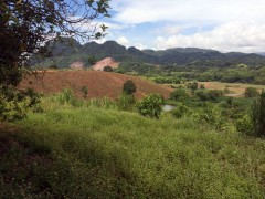 Land for sale in Chiang rai: 1 Rai 1 Million Baht, various sizes, Doi Hang.