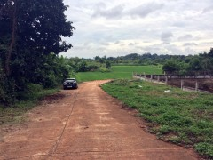 Land for sale in Chiang rai: 4 Rai 1 Ngan 29 Tarangwa, Nang Lae.
