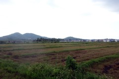 Land for sale in Chiang rai: 11 Rai, 55Mil, MFL University.