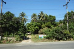 Land for sale in Chiang rai: 10 Rai, 20 Mil, Rob Wiang.