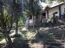 House for rent/sale in Chiang rai: Sale 6 Mil, Rent 20,000 THB, Mae Kon.