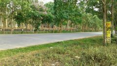 Land for sale in Chiang rai: 2 Ngan, Mainroad, Santiburi, Chiang rai.
