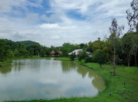 Land and House for sale in Chiang rai: 8 Million Baht, 1 Rai, Buffalo hill, Ropwiang.