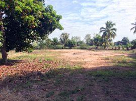 Land for sale in Chiang rai:1 Rai 3 Ngan 69 Tarangwa, 3.4 Mil, Wiang Chai, Chiang rai.