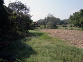 Land/House for sale in Chiang rai: 7 Rai 2 Ngan 45 Tarangwa, 8.5 Million Baht, 3 houses, Pah Sang, Mae Chan, Chiangrai