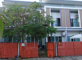 House/Office home for sale in Chiang rai: 19 Tarangwa, 2 Bedrooms, 2.5 Million Baht, Buffalo Hill, Ropwiang, Chiang rai