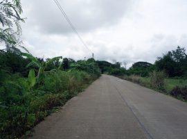 Land for sale in Chiang rai: 1 Rai 1 Ngan 29 Tarangwa, 3 Million Baht, Rop Wiang, Chiang rai