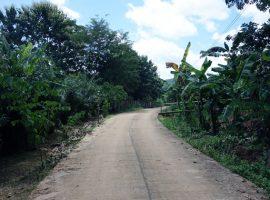 Land for sale in Chiang rai: 1 Rai 3 Ngan 88 Tarangwa, 4 Million Baht, Nang Lae, Chiang rai.