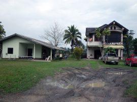 House for sale in Chiang rai: 1 Rai 1 Ngan 14 Tarangwa, Consist of 2 Houses, 4.5 Million Baht, Mae Yao, Chiangrai