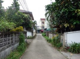Land/House/Commerical Builing for sale in Chiang rai:  3 Ngna 60 Tarangwa, 8 Million Baht, Ropwiang, Chiang Rai.