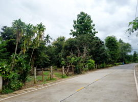 Land for sale in Chiang rai: 6 Rai 2 Ngan 51 Tarangwa, 9 Million Baht, Huay Sak.