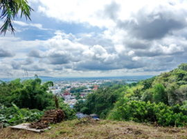 ที่ดินใกล้กับทางเข้าไปพม่ายกแปลงขาย แม่สาย: เนื้อที่ 255 ตรว., 8 ล้านบาท