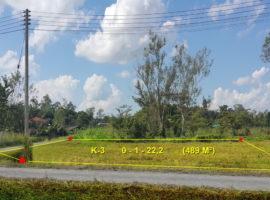 Land for sale in Chiang rai: 122 Tarangwa, 1,830,000 Baht, Tha Sai, Chiangrai.