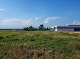 Land for Sale in Chiang rai: 6 Million Baht, 4 Rai 51 Tarangwa, San Sai, Chiang rai.