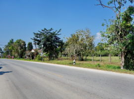 Land for sale in Chiang rai: 4 Rai , 30 Million Baht, Ban Du, Chiangrai.