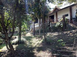 House for rent/sale in Chiang rai: Sale 3.9 Mil, Rent 20,000 THB, Mae Kon.