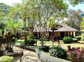Resort and Land for rent in Chiang rai: 1 house, 5 bungalows, 100,000 Baht/month, Maechan.
