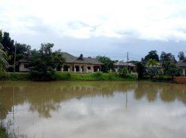 ขายและให้เช่าบ้านใกล้สนามก๊อฟสันติบุรี เชียงราย: เนื้อที่ 2 งาน 43 ตรว., 2 ห้องนอน, 7,500,000 บาท