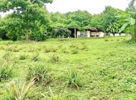 Land for Sale in Chiang rai: 6 Rai 1 Ngan 43 Tarangwa, 2.1 Million Baht, Mae Suai.