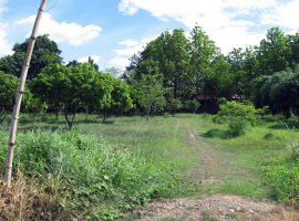 Land for sale in Mae Hong Son: 6 Rai 63 Tarangwa, 7.2 Million Baht, T.WiangNua, Pai, Mae Hong Son.