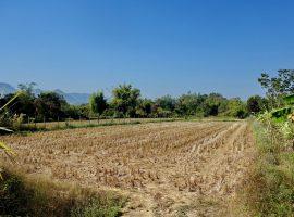 ขายที่ดินในตำบลดอยฮาง เชียงราย : เนื้อที่ 2 ไร่ 3 งาน 28 ตรว., 4.5 ล้านบาท