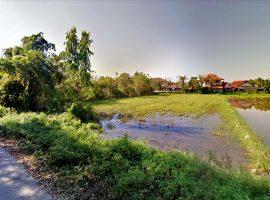 Land for sale in Chiang rai : 1 Rai 2 Ngan, 6 Million Baht, Ropwiang.
