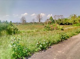 Land for sale in Chiang rai : 6 Rai 35 Tarangwa, 7.2 Million Baht, Ropwiang.