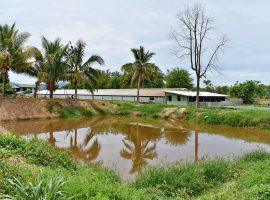 ขายฟาร์มหมูพร้อมบ่อปลาและบ่อบำบัด แม่ลาว เชียงราย : 6.5 ล้านบาท